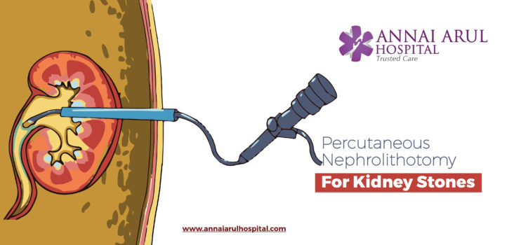 best kidney hospital in chennai